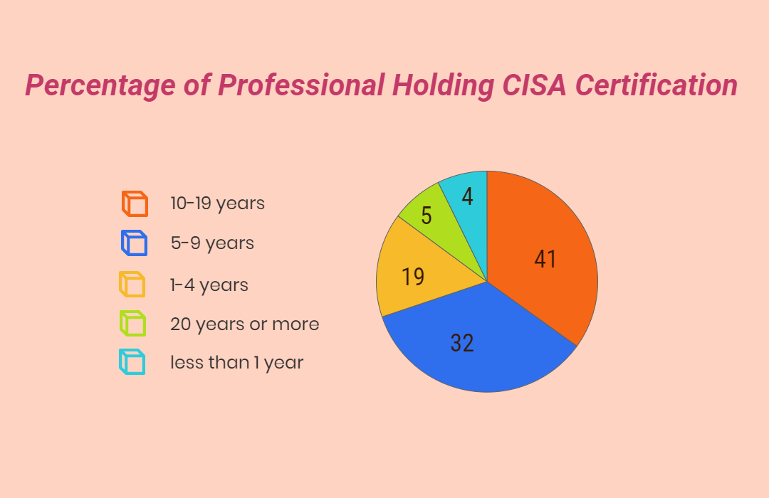 Cisa Certified Information Systems Auditor Msp Training Jersey